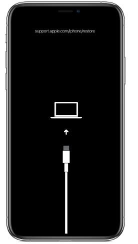 الرجوع إلى إصدار أقدم من iOS 15 beta إلى iOS 14