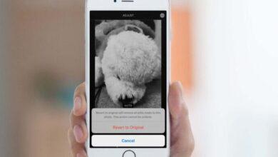 كيفية إزالة المرشحات والتأثيرات من الصور على iPhone