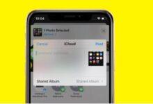 كيفية استخدام الألبومات المشتركة على iPhone وiPad
